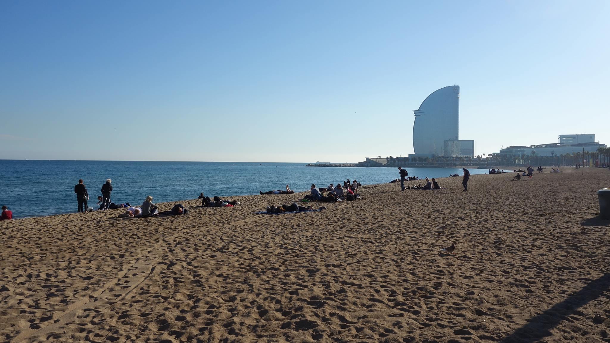 Ein Strand mit einem Gebäude im Hintergrund
