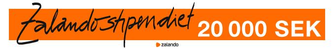 https://www.zalando.se/zalando-stipendiet/