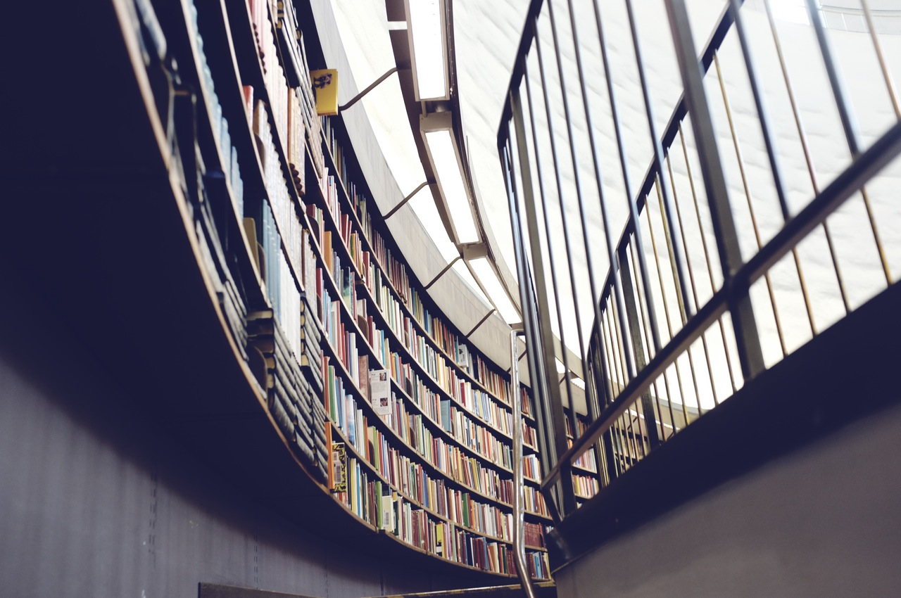 Library with lots of books